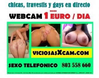 videochat porno, webcam , sexo cam 1 euro / dia, videollamada movil viciosasxcam.com, linea erotica 803 558 660