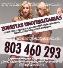ZORRITAS UNIVERSITAS TE FOLLAN